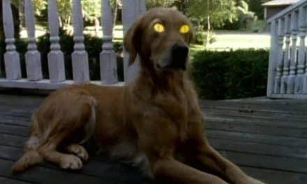 Najpopularniejsze i najstraszniejsze serialowe horrory – 7 propozycji