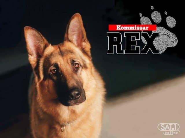 Niemieckie seriale  REX
