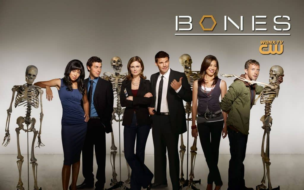 Kości - Bones