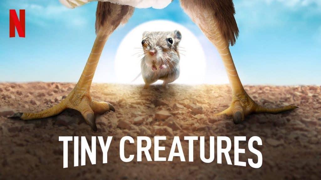 tiny creatures 1